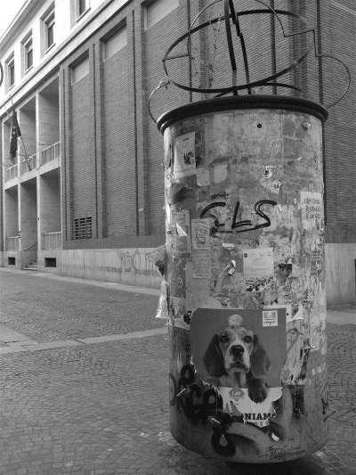 2017 Turin (12)